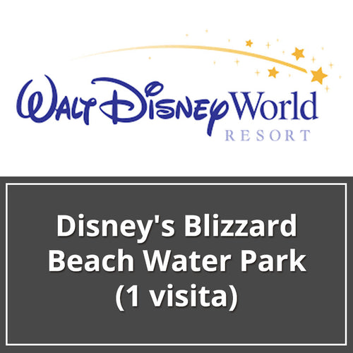 Disney's Blizzard Beach Water Park (1 visita)