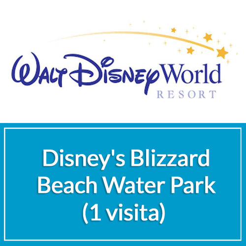 Disney's Blizzard Beach Water Park (1 visita) - Sun Tours Orlando