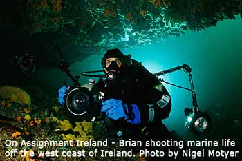Diving with Brian Skerry