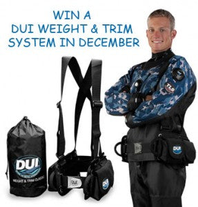 WIN DUI Weight & Trim System