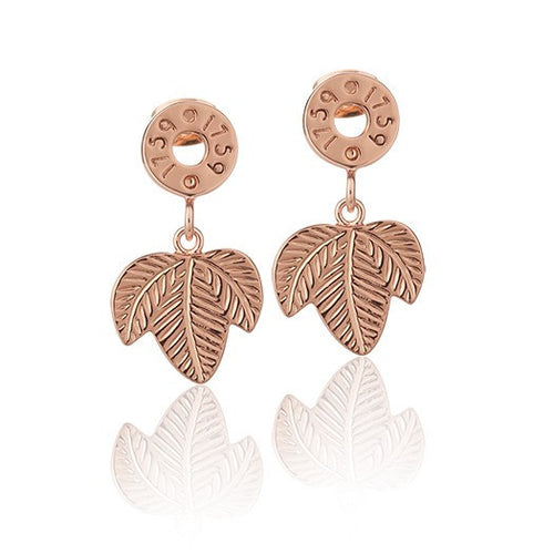 Guinness Rose Gold Plated Leaf Earrings by Newbridge
