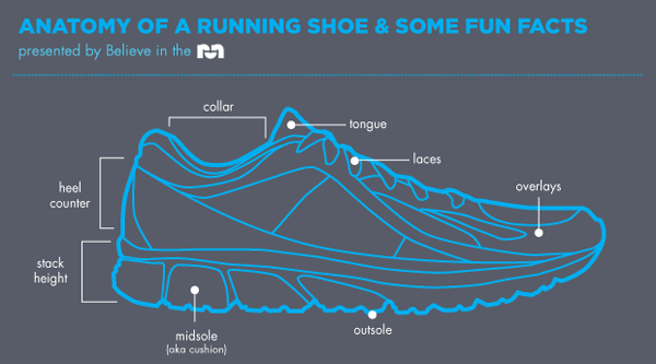 Shoe School: the Anatomy of a Running Shoe – Totally Running and ...