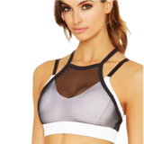 Wild Honey Halter Sports Bra - Echo90210