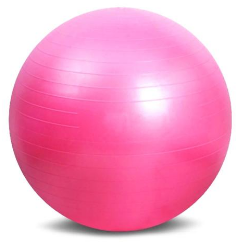 25.5 Inches (65cm) Health Fitness Ball - Echo90210