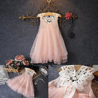 Baby Pink Lace Flower Tutu Princess Dress