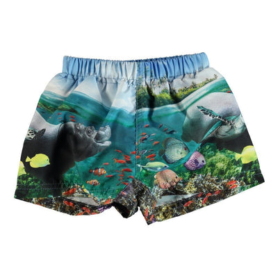 molo-newton-blue-imagine-underwater-swim-trunk-8s19p306-5353