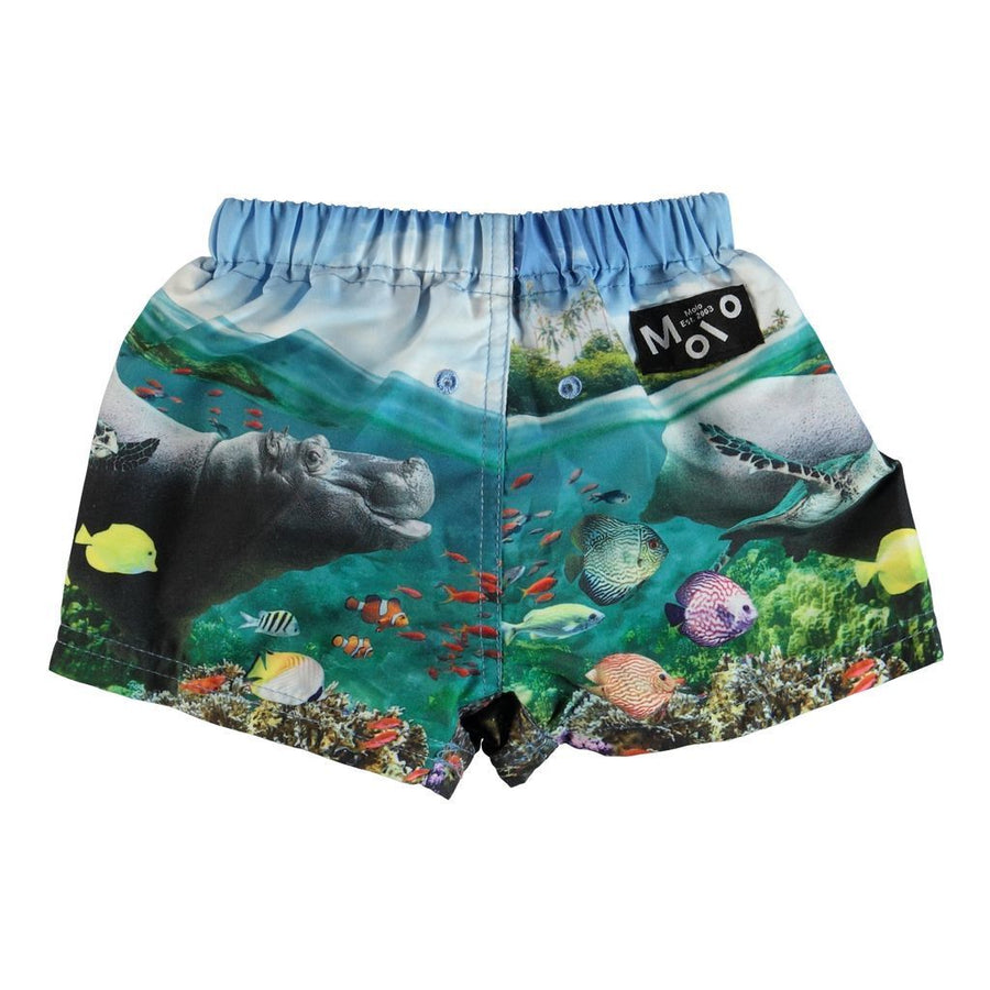 MOLO Newton Blue Imagine Underwater SWIM TRUNK