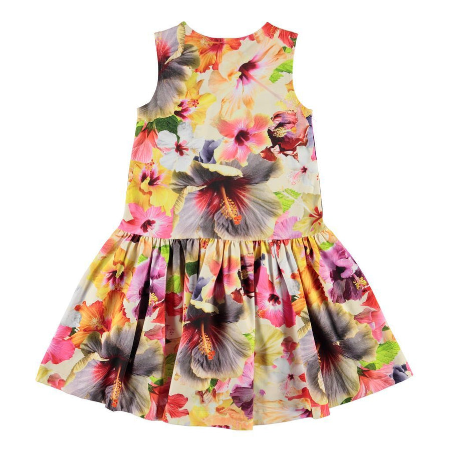 MOLO-DRESS SS-2S20E122-6067 PACIFIC FLORAL