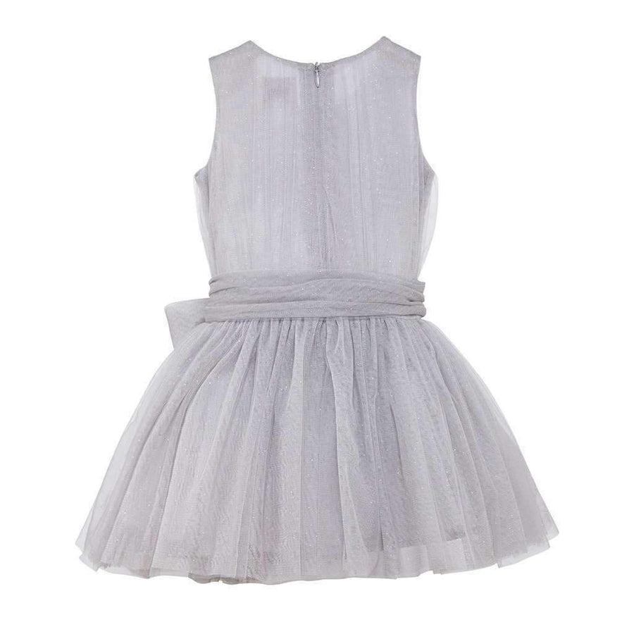 Luna Luna Marion Silver Tulle Dress