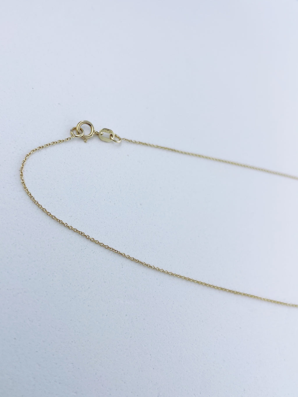 Nude Chain | 14k Gold | 20 inch