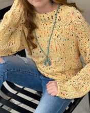Chenille Crew Neck Long Slv Sweater w Multi Colored Flecks
