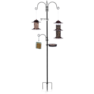 Deluxe Wild Bird Feeder Station