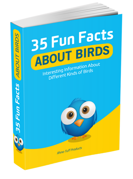 35 Fun Facts About Birds eBook