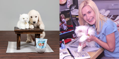 Angela from The Office with puppy at desk comparison