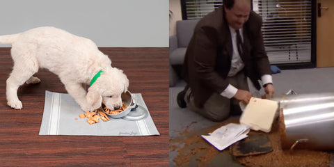 Kevin from The Office with puppy at desk comparison
