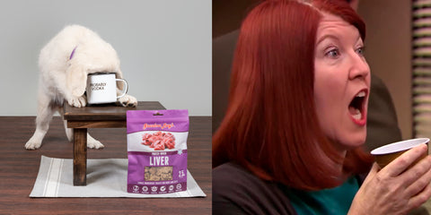 Meredith from The Office with puppy at desk comparison