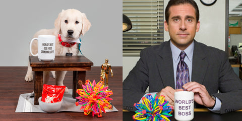 Michael Scott from The Office with puppy at desk comparison