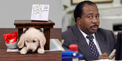 Stanley from The Office with puppy at desk comparison