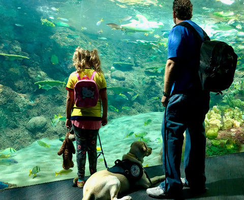 Young girl and father at aquarium with service dog