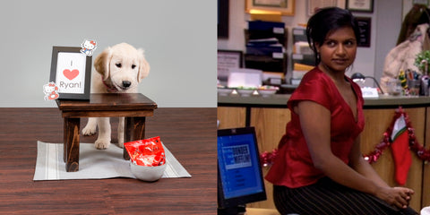 Kelly from The Office with puppy at desk comparison