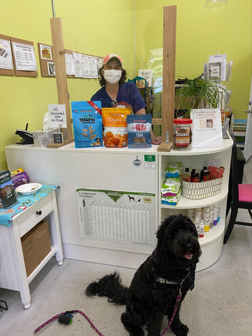 store owner, phyllis, and dog at store counter