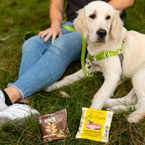 Dog sitting next to woman in grass with dog food samples