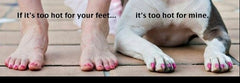 "Human feet, dog paws on ground saying ""if it's too hot for your feet...it's too hot for mine."""