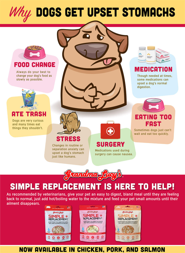 Why dogs get upset stomachs: Food change, Ate trash, Stress, Surgery, Eating too fast, Medication. Simple Replacement is here to help.