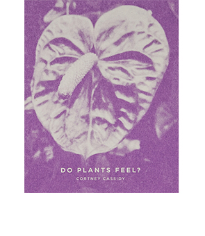 Do Plants Feel