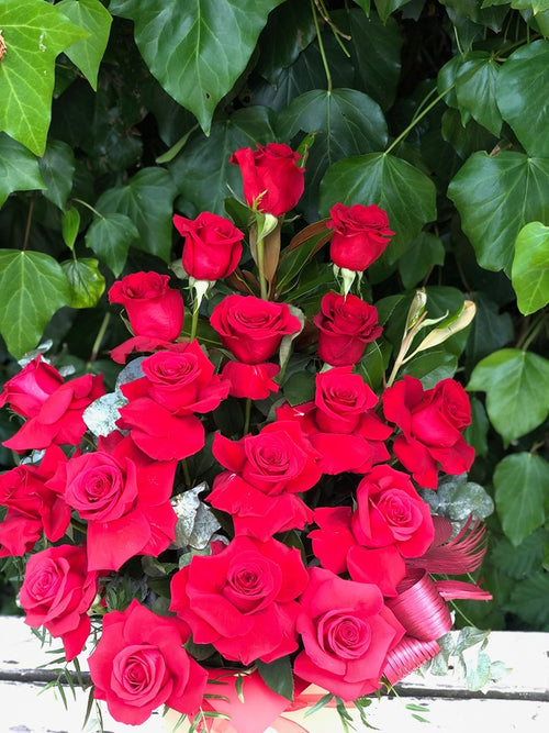 18 Premium Red Roses Arrangement