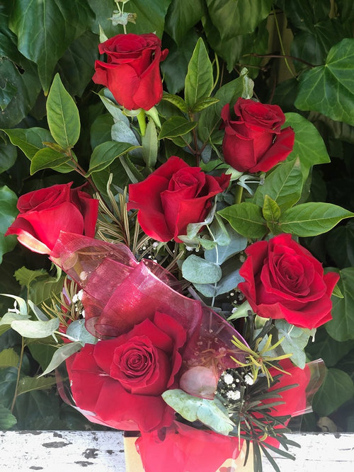 Half Dozen Premium Red Rose Arrangement