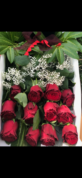 Dozen Premium Red Rose Long Box