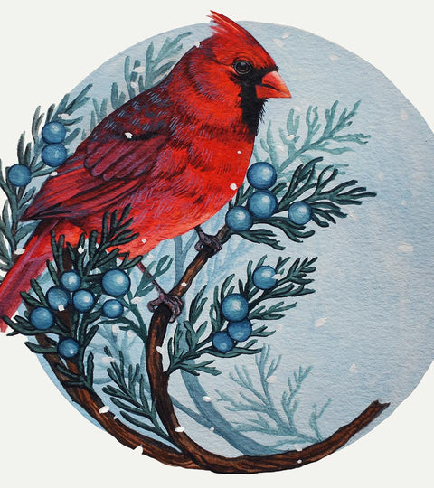 COMING SOON Caylin Jayde :: Painting Birds: Mixing Gouache with Watercolour