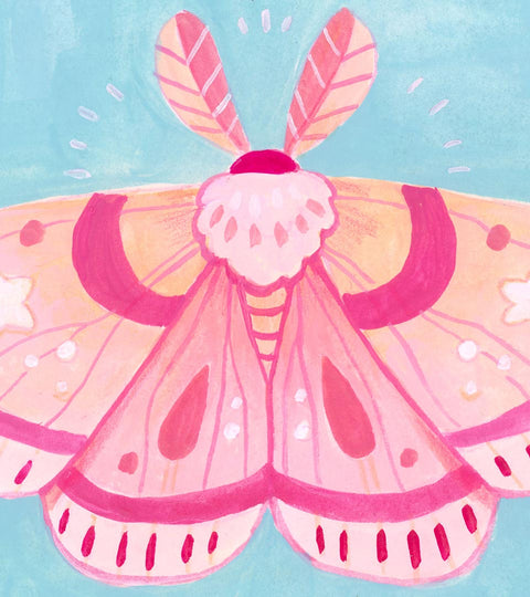Rowan Kingsbury :: Turning Boring into Cute: Stylizing Moths with Acryla Gouache