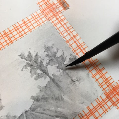 A Friendly Introduction to Water-Soluble Graphite