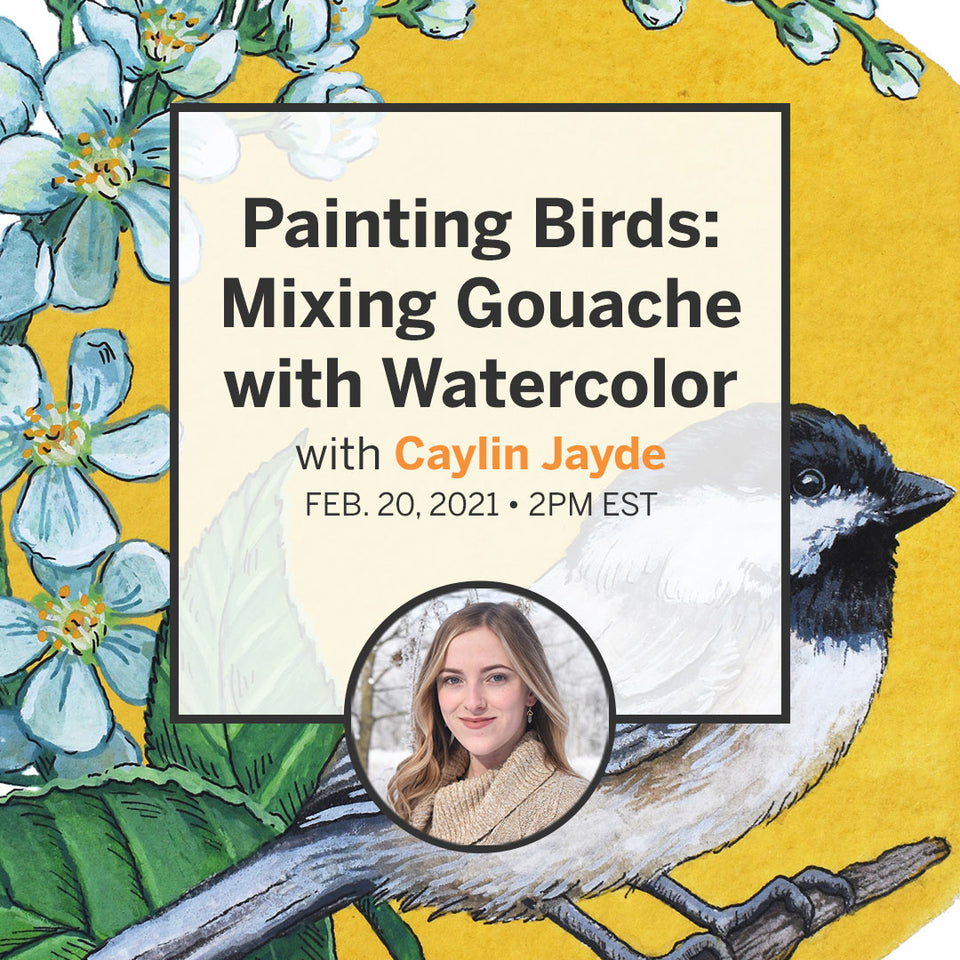 Painting Birds: Mixing Gouache with Watercolour
