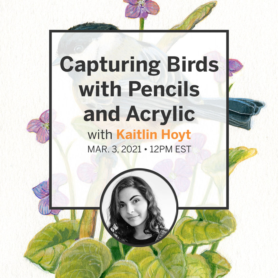 Capturing Birds with Pencils and Acrylic