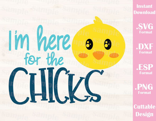 Baby Chicken Quotes: Ideas With Love