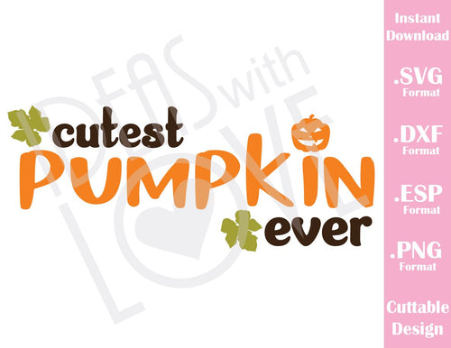 Cutest Pumpkin Ever Fall Halloween Baby Kids Cutting File in SVG, ESP, DXF and PNG Format for Cricut and Silhouette