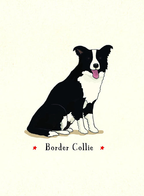 Border Collie [GIFT CARD]