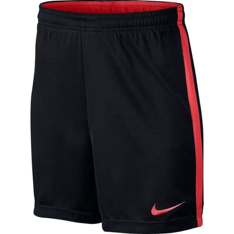 Nike Dri FIT Academy Junior Shorts 832901 018