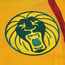 Jerseys / Soccer: Puma National Team 2010 Cameroon (Away) Jersey 736015-04 - 2010 Away Kit Cameroon Clothing Football
