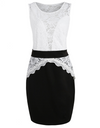 Plus Size Sleeveless Lace Bust Monochrome Dress - Multi / L