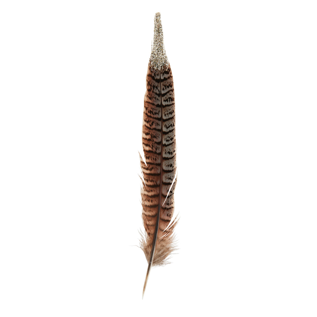 Decorative Pheasant Feather
