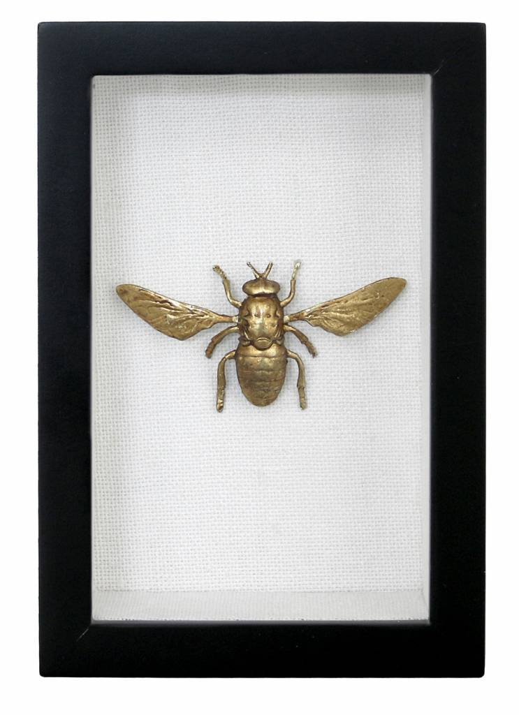 Brass Bee in a frame