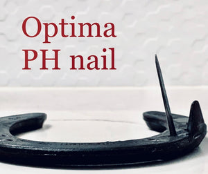 Optima Pitched Head Horse nails