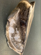 Load image into Gallery viewer, Chris Pollitt Freeze Dried Horse Foot
