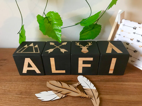7cm Letter/Picture Combination Blocks