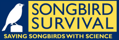 Song Bird Survival