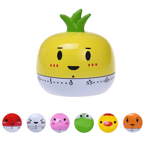 Cute 55 Minute Kitchen Timer - Various Designs